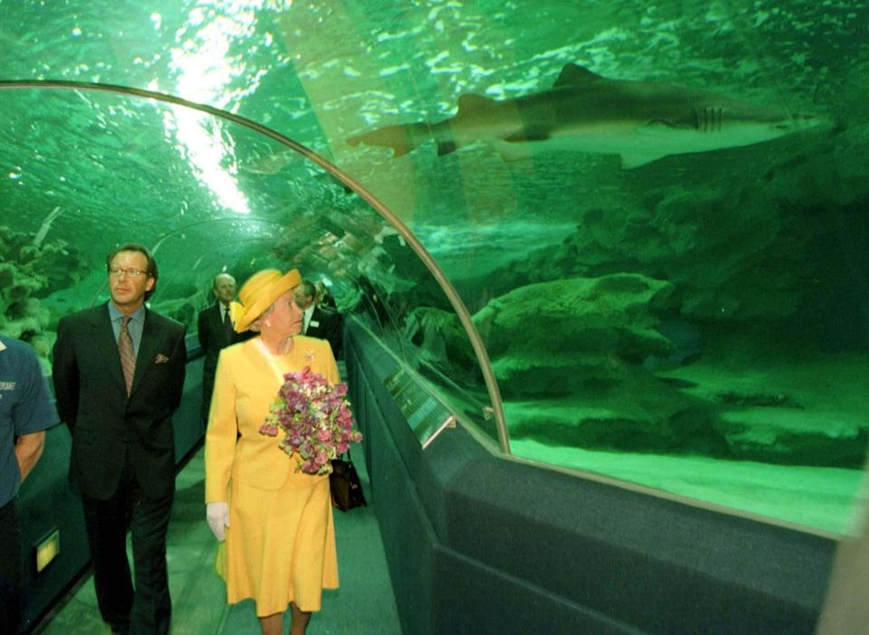 <p>The Queen and the Duke of Edinburgh are confronted by a shark as they walk through the observation tunnel at the Blue Planet Aquarium in Cheshire. (PA) </p>