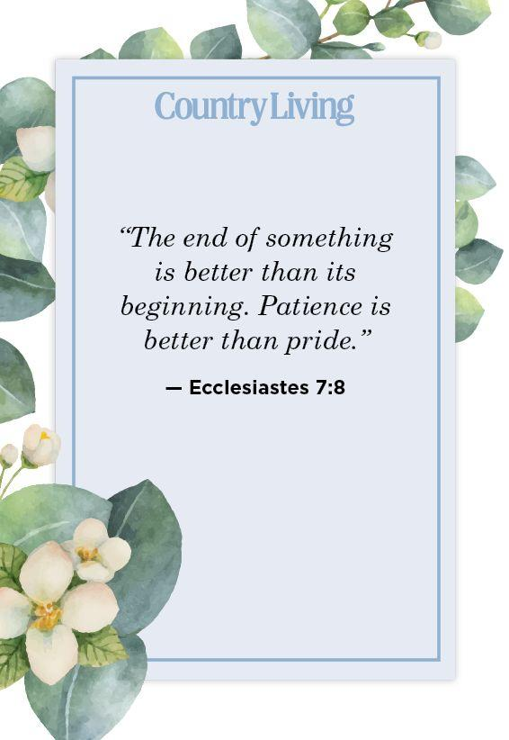 """<p>""""The end of something is better than its beginning. Patience is better than pride.""""</p>"""