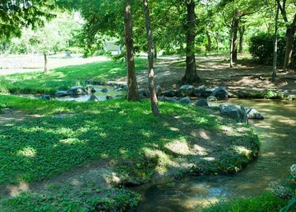 ▲Passing through the flowing stream that winds between the trees, you will see the barbecue place right there