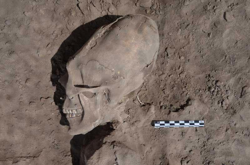 'Alien' skulls from 1,000 years ago found in Mexico