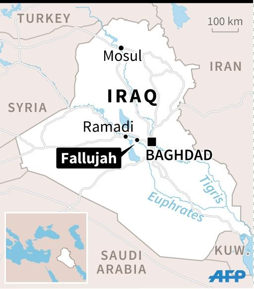 Iraqi forces have retaken more than 80 percent of Fallujah from the Islamic State group (AFP Photo/afp)