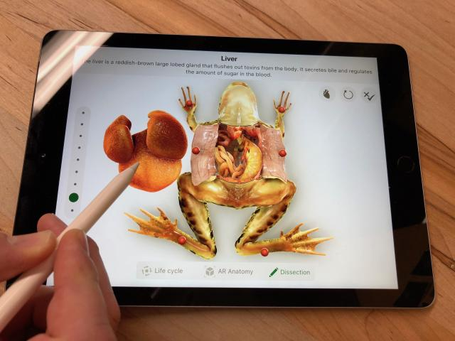 The iPad's processing power allows you to do things like dissect virtual frogs without hurting any real amphibians.