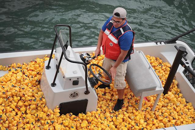 <p>A volunteer helps to recover rubber ducks from the Chicago River following the Windy City Rubber Ducky Derby on August 3, 2017 in Chicago, Illinois. (Photo: Scott Olson/Getty Images) </p>