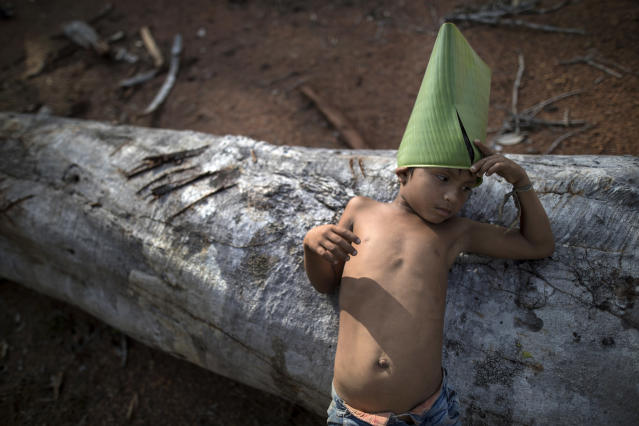 In this Sept. 2, 2019 photo, a Tembe child leans on a log as he holds on to a make-believe hat he constructed from a giant leaf, in the Ka 'a kyr village, Para state, Brazil. Like their ancestors, the Tembe plant trees to teach their children the value of preserving the world's largest rainforest, which is a critical bulwark against global warming. (AP Photo/Rodrigo Abd)