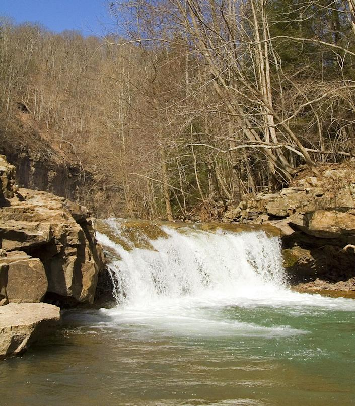 With 86 reported Bigfoot sightings and an abundance of caves, West Virginia is an ideal place for Bigfoot to hide.