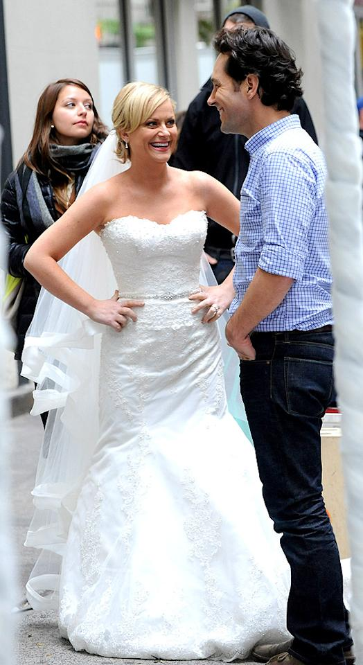 "<span style=""font-size:11.0pt;"">She may be going through a divorce from husband Will Arnett, but ""Parks and Recreation"" actress Amy Poehler looked perfectly comfortable being back in a wedding dress on the set of ""They Came Together,"" a comedy co-starring Paul Rudd, in New York on Monday. (10/8/2012)</span>"