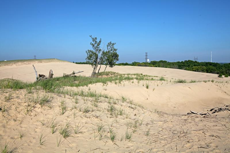 The top of Mount Baldy in Indiana Dunes National Park is bare, but work is underway to replant marram grass to stabilize and restore the dune.