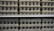 "<p>Trader Joe's has a huge selection of eggs—from cage-free and free range to organic and fertile. The <a href=""https://www.traderjoes.com/faqs/general-information?categoryid=2"" rel=""nofollow noopener"" target=""_blank"" data-ylk=""slk:company writes"" class=""link rapid-noclick-resp"">company writes</a> that fertile eggs are ""laid by hens in contact with roosters."" Interesting.</p>"