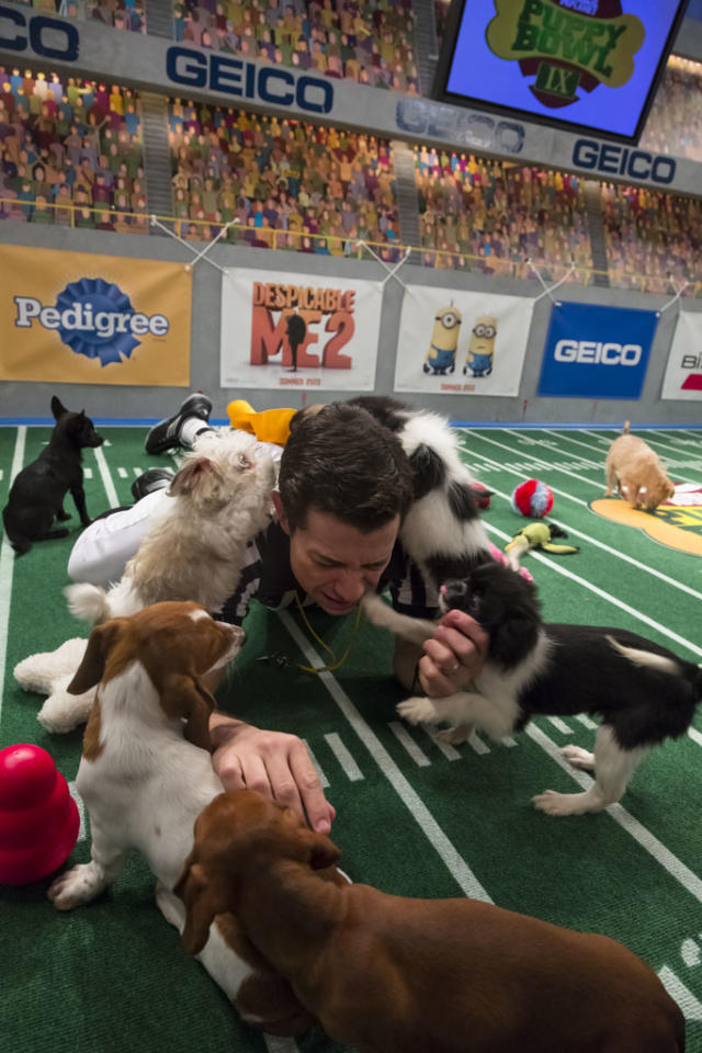 Referee calls nap time during Puppy Bowl IX.