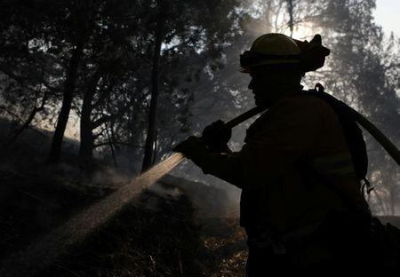 Firefighters work to control a wildfire in Sonoma, California, U.S., October 14, 2017. REUTERS/Jim Urquhart