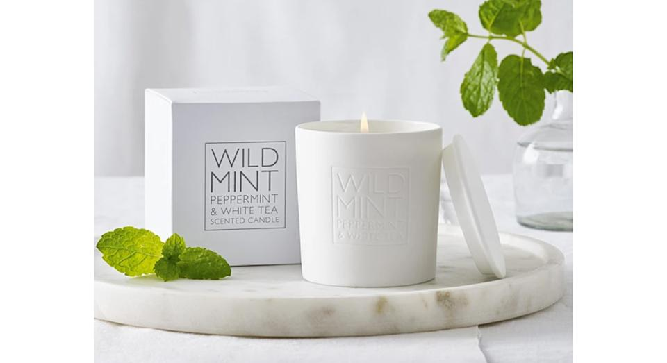 Wild Mint Candle (The White Company)