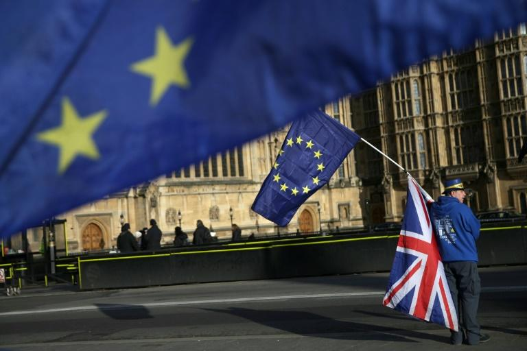 Pro-EU protesters have held frequent demonstrations against Brexit