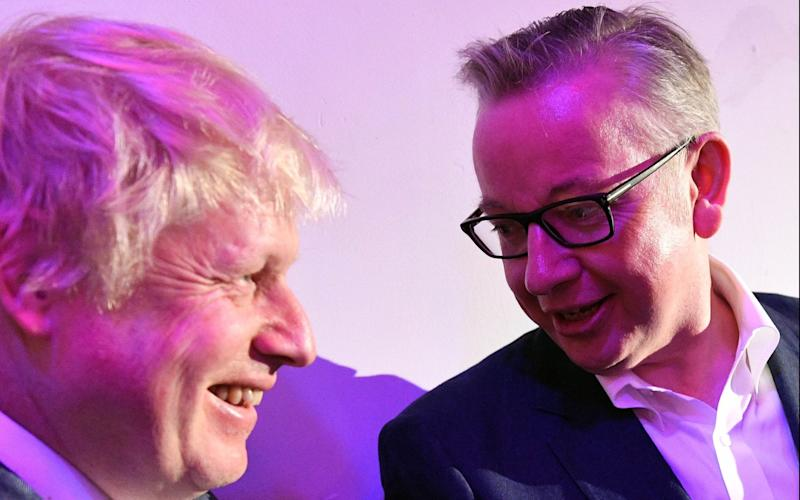 Boris Johnson and Michael Gove ran the Vote Leave campaign together - i-Images Picture Agency