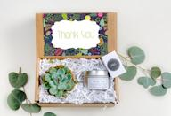 <p>Plant-loving grandparents will definitely want this one! This <span>Succulent Gift Box</span> ($30) has a small succulent inside along with a terracotta pot and soil.</p>