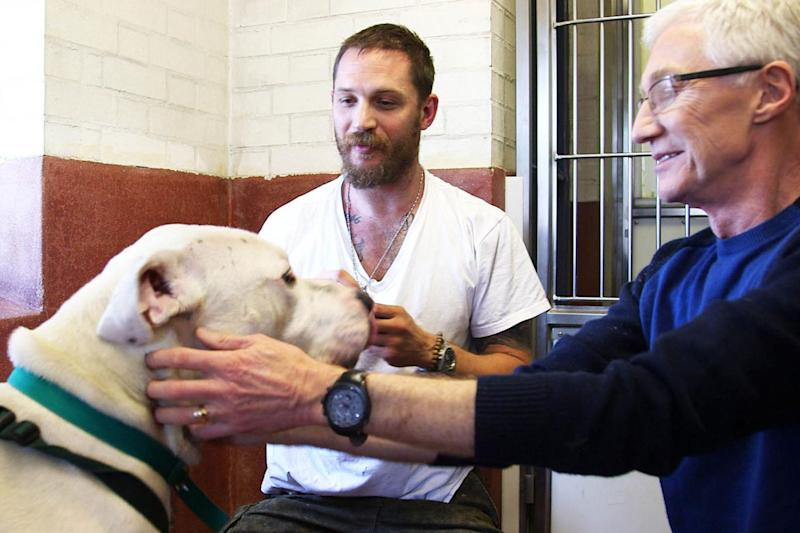 Good friends: Tom Hardy and Paul O'Grady bonded over their love of dogs