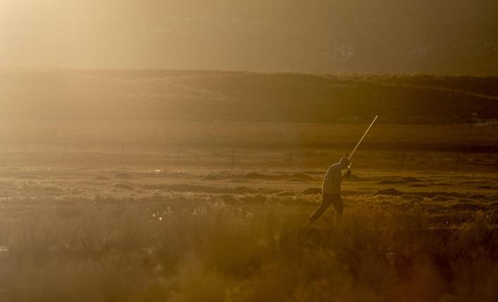 A fly fisherman heads home from the Owens River in the late-afternoon light.