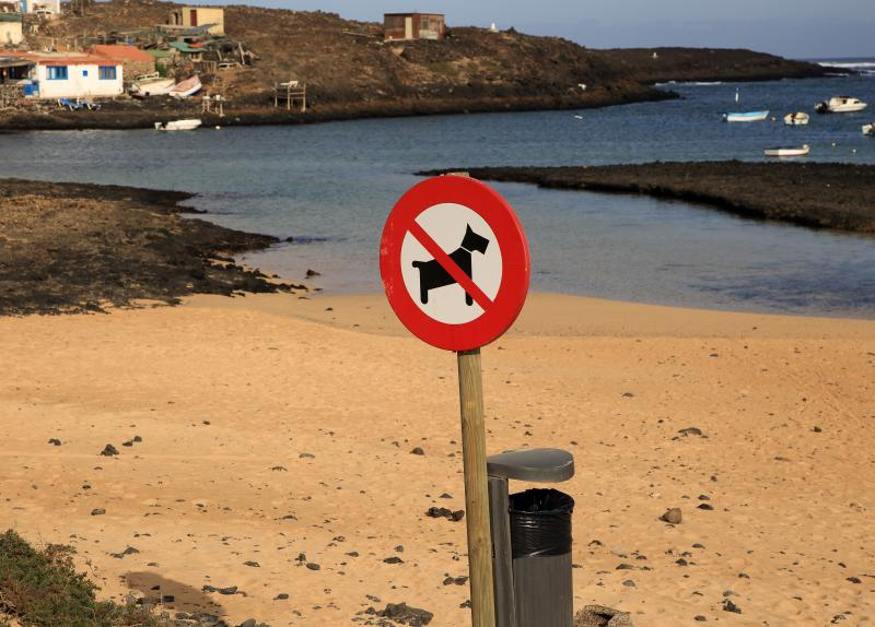 No dogs on beach sign village of Majanicho on the north coast, Fuerteventura, Canary Islands, Spain. (Photo by: Geography Photos/Universal Images Group via Getty Images)