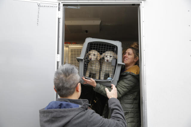 <p>Animal Haven volunteer Nicole Smith passes a crate to Animal Haven Director of Operations Mantat Wong, containing two dogs rescued from a South Korean dog meat farm by Humane Society International (HSI), on Sunday, March 26, 2017, in New York. HSI reached an agreement with the farmers to permanently close the farm and fly all the dogs to the United States for adoption. This is the seventh dog meat farm the organization has closed in South Korea so far, saving more than 800 dogs as part of its campaign across Asia to end the killing of dogs for consumption. (Andrew Kelly/AP Images for Humane Society International) </p>
