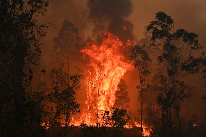 A fire rages through trees in bushland at Bobin, 350km north of Sydney.
