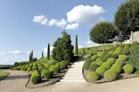 """<p>The prim and proper shrub for those desiring a more manicured look, <a href=""""https://www.veranda.com/outdoor-garden/g31124516/boxwood-landscaping-ideas/"""" rel=""""nofollow noopener"""" target=""""_blank"""" data-ylk=""""slk:boxwood"""" class=""""link rapid-noclick-resp"""">boxwood</a> is relatively easy to grow, easy to prune and shape, and not as prone to disease. It maintains its beautiful green hue year-round and has adorned gardens since Julius Caesar's time, when he introduced the first topiaries in Roman gardens. </p><p><br><strong>Where to plant:</strong> Full to partial sun<br><strong>USDA Hardiness Zones:</strong> 6</p>"""