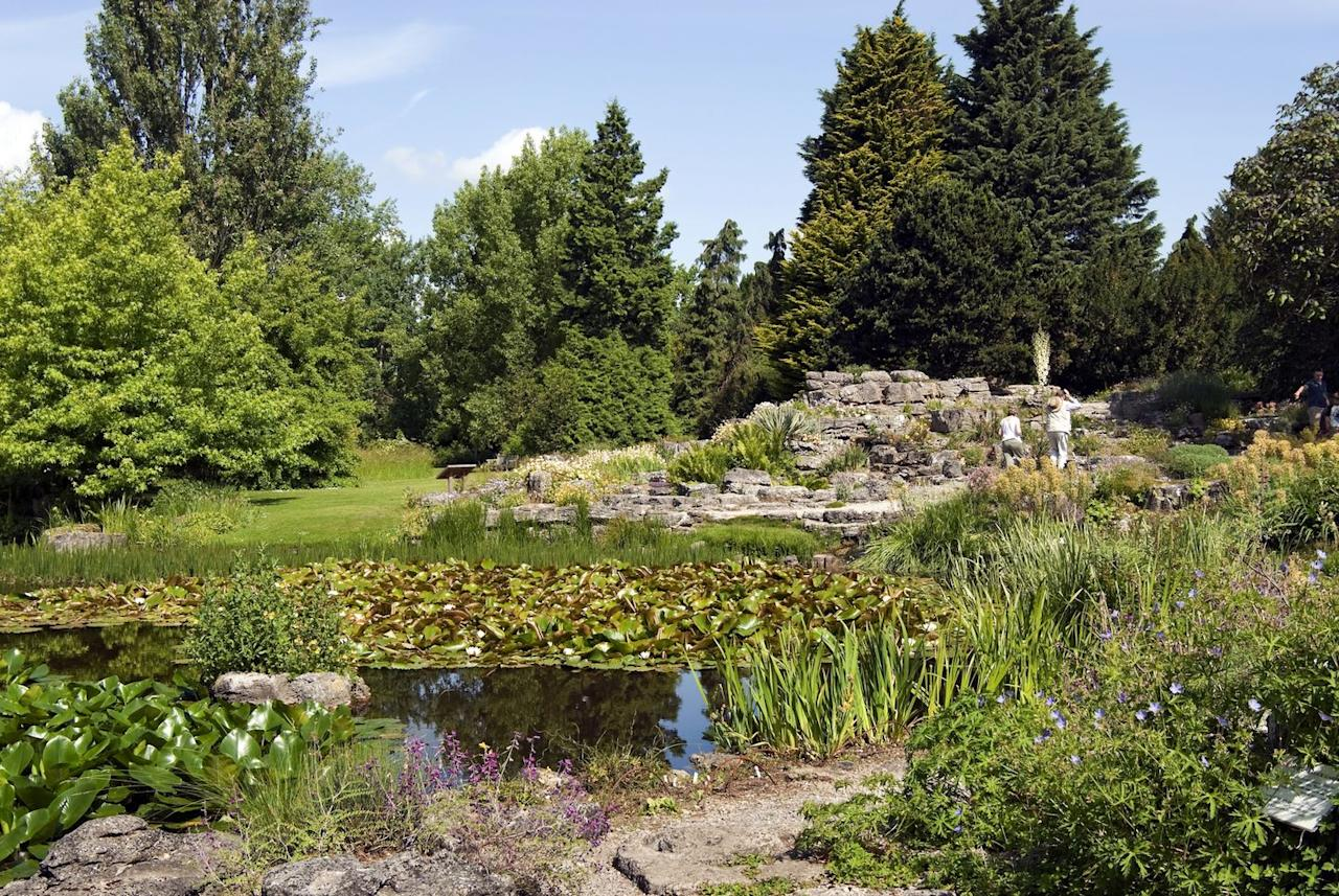 "<p>If you're heading to Cambridge, be sure to pay a visit to their breathtaking botanical gardens. You'll love the scented and winter gardens, which feature plants from all around the world. Head to the glasshouse where cacti and exotic plants steal the show. </p><p><a class=""body-btn-link"" href=""https://www.botanic.cam.ac.uk/"" target=""_blank"">BOOK NOW</a> </p>"