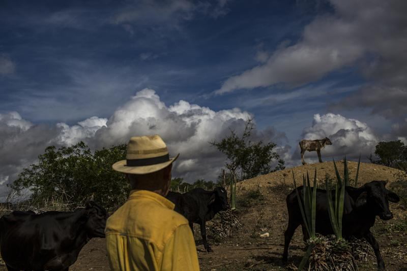 Bolsonaro Caps Natives' Lands, PleasingFarmers in One of First Acts