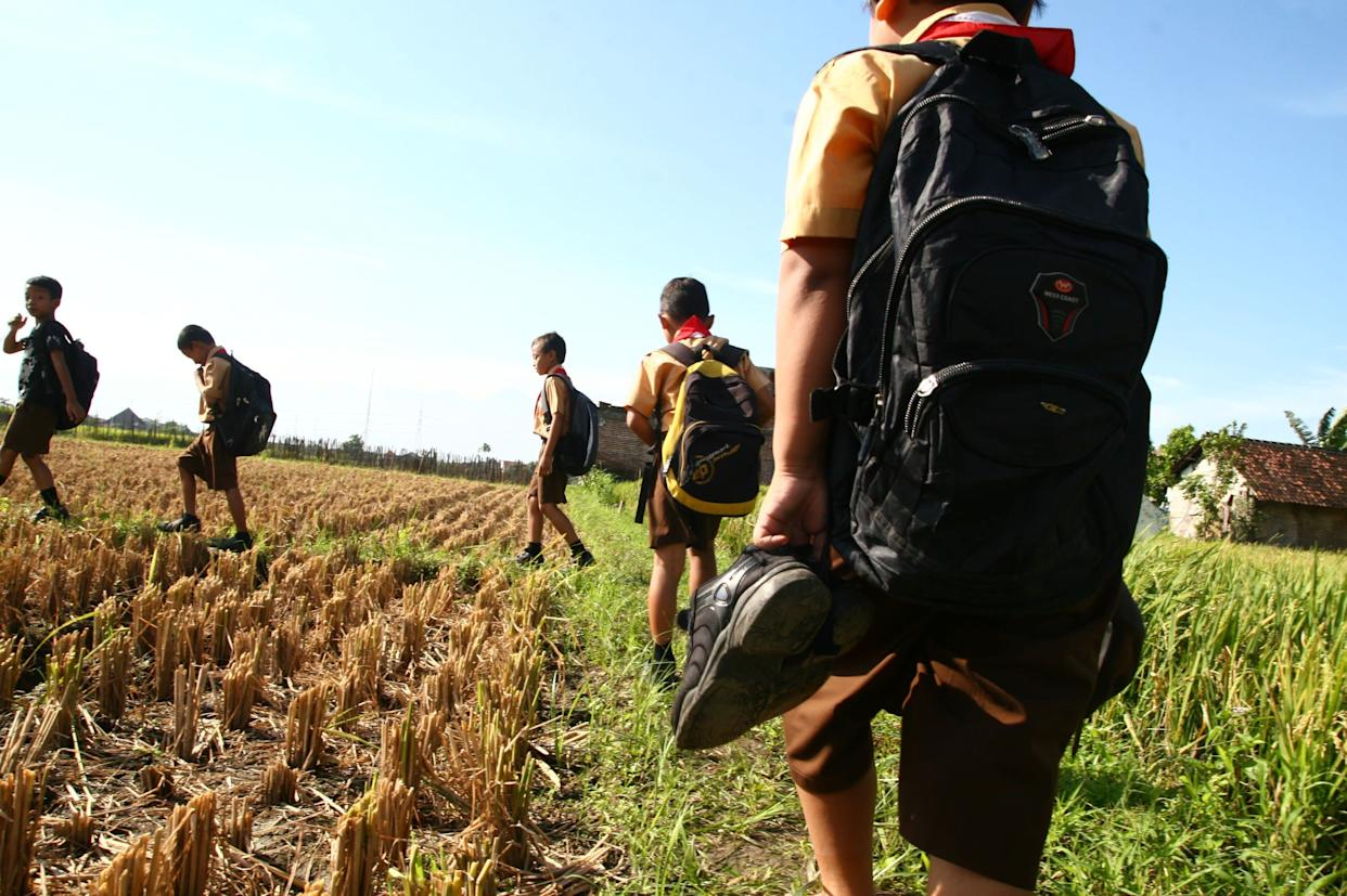 This picture, taken May 31, 2013, shows 8-year-old Indonesian student Wahyu (second from the right) and his friends walking to school through a rice field in a Malang town on eastern Java island.