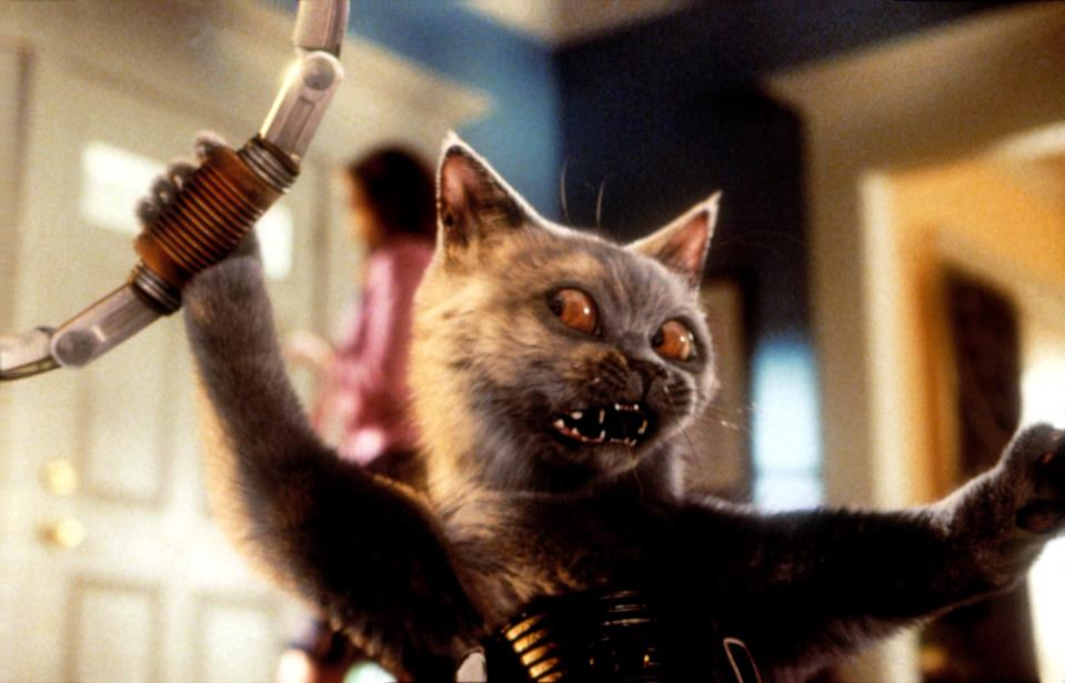 cat grabbing onto metal piece with its mouth open and fangs out
