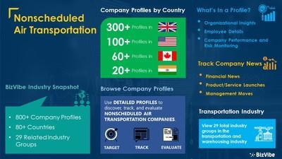 Snapshot of BizVibe's nonscheduled air transportation industry group and product categories.