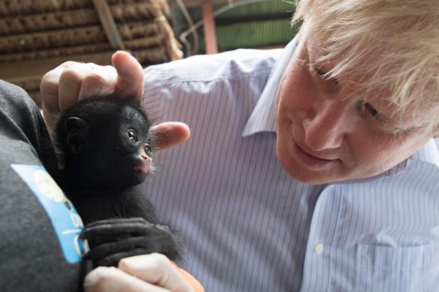 Boris Johnson is shown a baby black spider monkey (maquisapa negra) that was rescued by rangers after its parents were killed by poachers (PA)