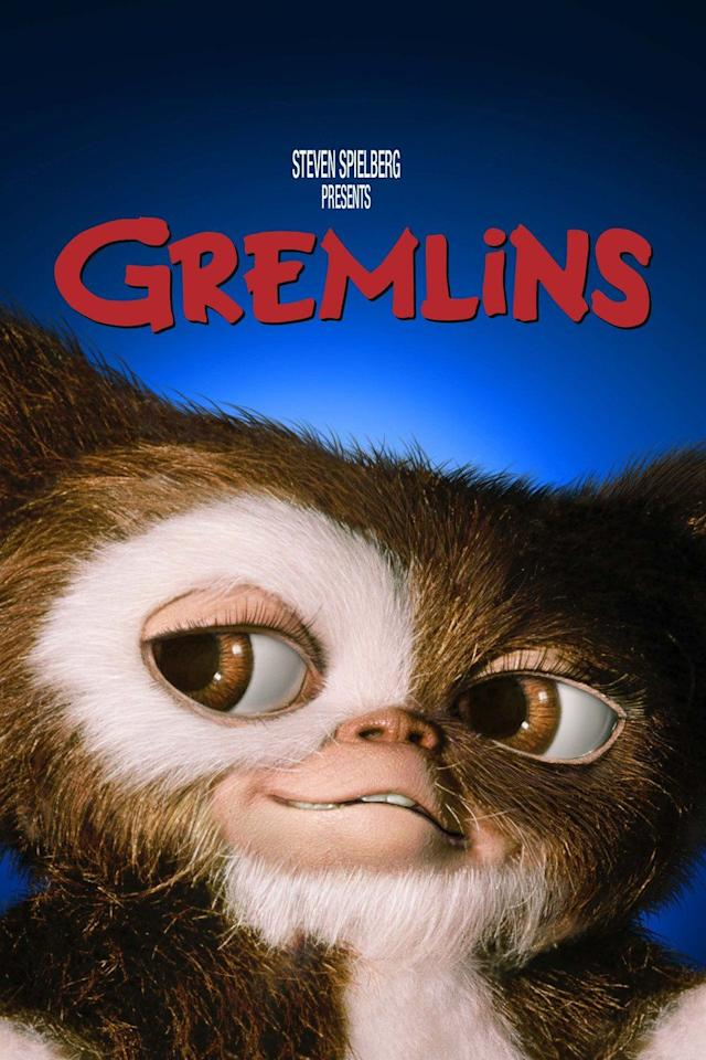 "<p>A man wants a special gift for his son and finds a unique creature at a store in Chinatown. The shopkeeper warns him to never expose him to bright light, water, or to feed him after midnight. When all of this happens, it results in a gang of angry gremlins terrorizing the town.</p><p><a class=""body-btn-link"" href=""https://www.netflix.com/search?q=GREMLINS&jbv=562050&jbp=0&jbr=0"" target=""_blank"">STREAM NOW</a></p>"