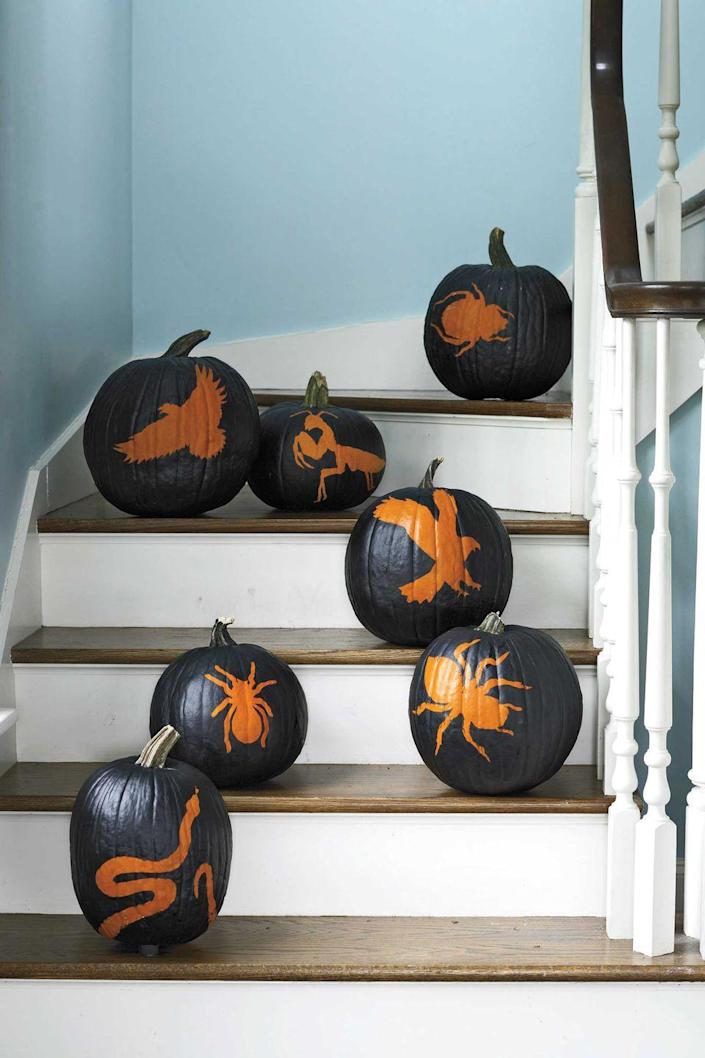 """<p>Pull together a sophisticated setting with a group of painted silhouette pumpkins. Use adhesive stencils or <a href=""""https://www.womansday.com/home/crafts-projects/how-to/g303/10-pumpkin-perfect-patterns-20702/"""" rel=""""nofollow noopener"""" target=""""_blank"""" data-ylk=""""slk:free printable stencils"""" class=""""link rapid-noclick-resp"""">free printable stencils</a> to make orange bugs, birds and creepy crawly snakes pop against a matte black paint finish.</p><p> <a class=""""link rapid-noclick-resp"""" href=""""https://www.amazon.com/Scrollwork-Stencil-StudioR12-Reusable-Template/dp/B07KVSC4H6/?tag=syn-yahoo-20&ascsubtag=%5Bartid%7C10070.g.1902%5Bsrc%7Cyahoo-us"""" rel=""""nofollow noopener"""" target=""""_blank"""" data-ylk=""""slk:SHOP Halloween stencils"""">SHOP Halloween stencils</a> </p>"""