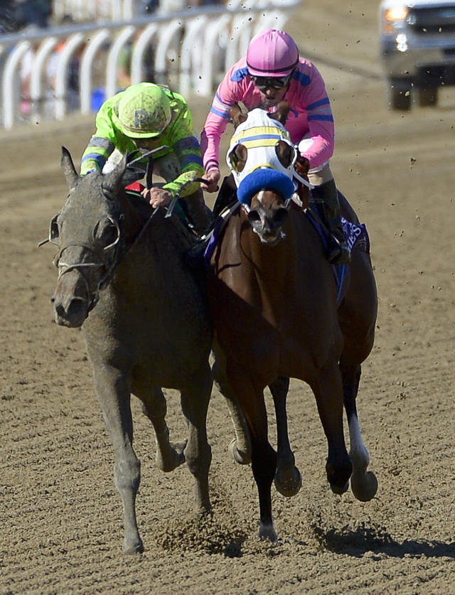 File- This Nov. 2, 2013, file photo shows Ria Antonia, left, with jockey Javier Castellano aboard winning the Breeders' Cup Juvenile Fillies horse race at Santa Anita Park in Arcadia, Calif. A filly is going to challenge the boys in the Preakness for the first time since 2009 when Rachel Alexandra won. Ria Antonia will be ridden by Calvin Borel, who guided Rachel Alexandra to victory. Ria Antonia is coming off a sixth-place finish in the Kentucky Oaks on May 2 at Churchill Downs, where she has been training. (AP Photo/Mark J. Terrill, File)