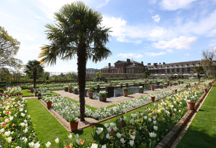The gardens at Kensington Gardens have spectacularly sprung to life (PA)