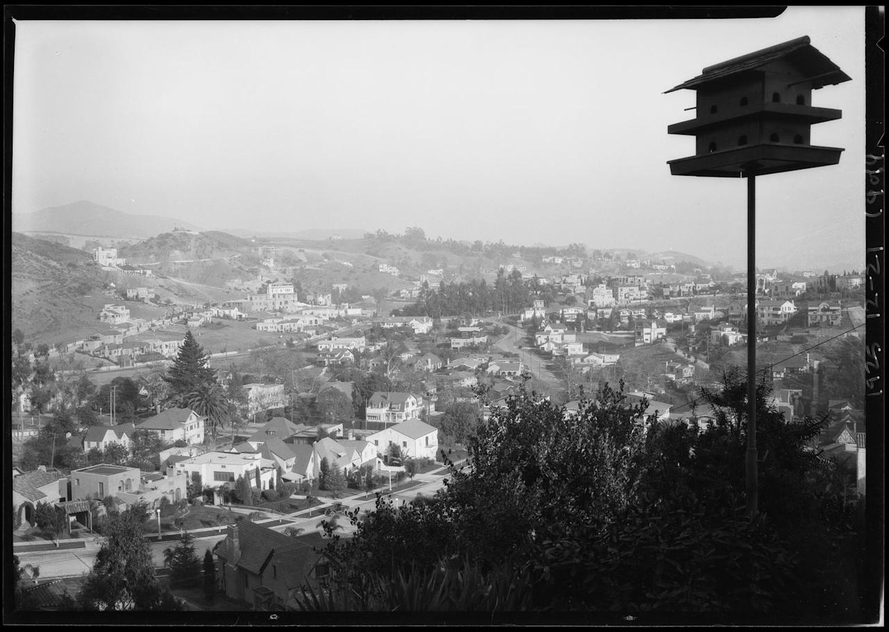 "<p>Hollywood is known for its hilly terrain and predictably sunny skies. The hills surrounding the city have become the ""it"" spot to live if you're a celebrity living in LA. <br></p>"