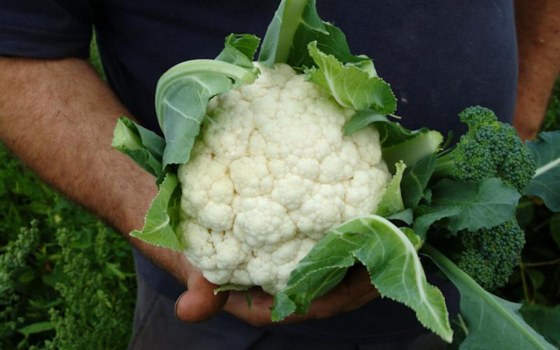 Cauliflower - Credit: Christopher Jones