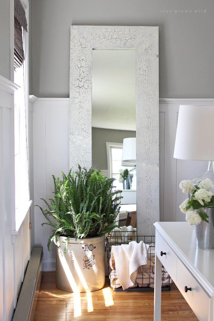 <p>Sure, it looks great, but it's also great for air quality. Boston ferns are natural air humidifiers and purifiers. </p>