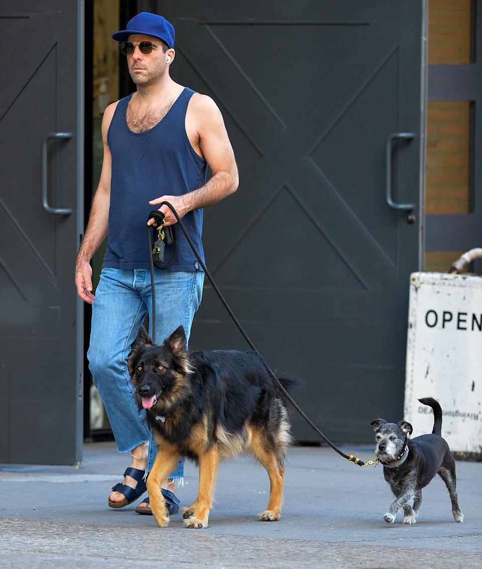 <p>Zachary Quinto leads the way during a walk around N.Y.C. with his pups on Oct. 8.</p>