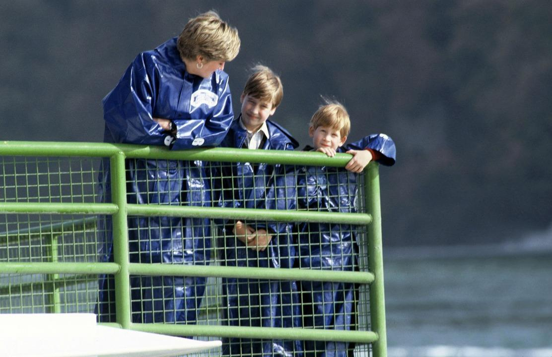 A young Prince Harry visited Niagara Falls with his mother, Princess Diana, and brother, Prince William.