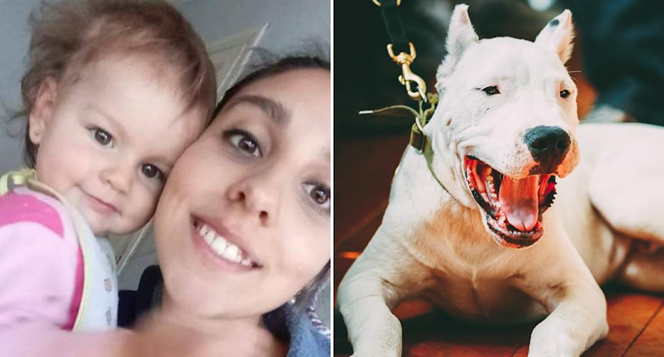 Micaela Rufina Mendoza (left), 1, was mauled to death by her family's Argentinian Dogo (pictured right is a stock image). Source: Newsflash/Australscope