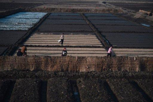 North Korea army mobilized as rivers run dry in worst drought in years