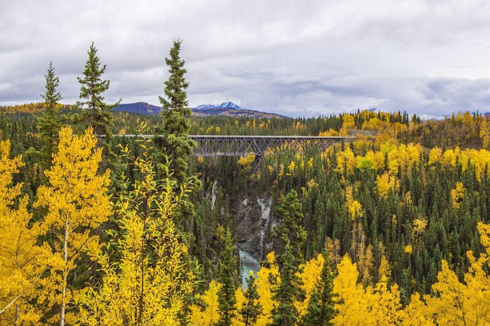 <p>Those with a fear of heights might face their fears when they cross the Kuskulana Bridge, which sits 200 feet above the Kuskulana River in Wrangell-St. Elias National Park, Alaska. </p>
