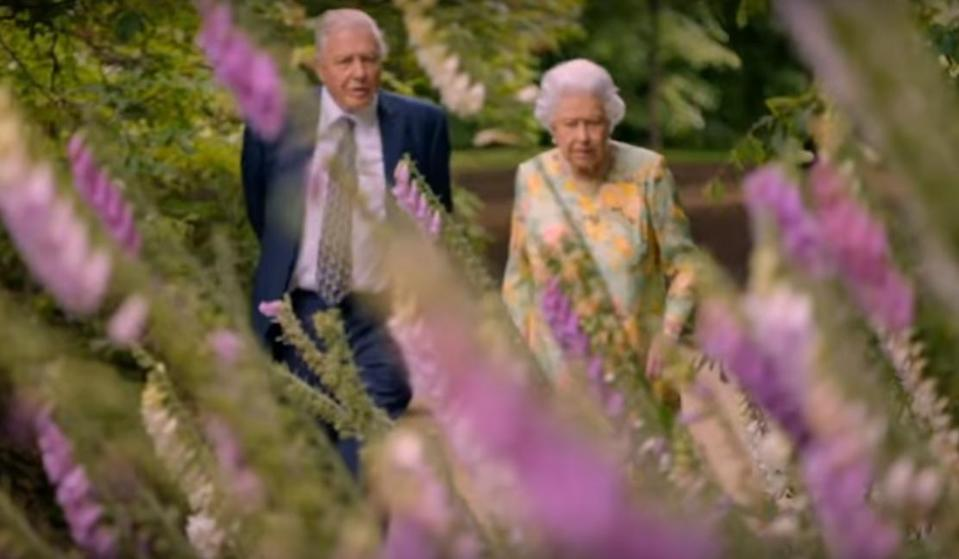 Sir David and the Queen team up on his latest. (ITV)