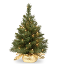 """<p><strong>National Tree Company</strong></p><p>amazon.com</p><p><strong>$21.83</strong></p><p><a href=""""https://www.amazon.com/dp/B00EJ2BRW0?tag=syn-yahoo-20&ascsubtag=%5Bartid%7C10057.g.4010%5Bsrc%7Cyahoo-us"""" rel=""""nofollow noopener"""" target=""""_blank"""" data-ylk=""""slk:BUY NOW"""" class=""""link rapid-noclick-resp"""">BUY NOW</a></p><p>Perfect for apartments, this tiny tree features pre-strung lights and a golden cloth bag base. It's mini, cute, and chic! And that price? You can't beat it.</p>"""