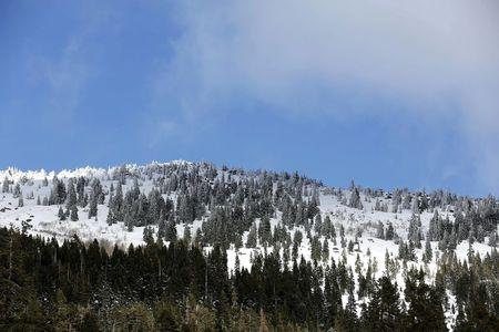 An above-average amount of snow covers the mountains during the first snow survey of winter conducted by the California Department of Water Resources near Phillips, California, December 30, 2015.  REUTERS/Fred Greaves