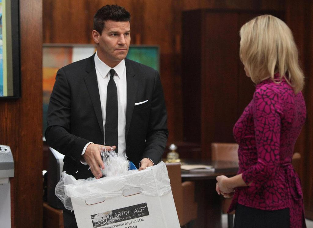 "Booth (David Boreanaz) questions the assistant of a recently murdered high-powered divorce lawyer in ""The Partners in the Divorce"" episode of ""Bones."""