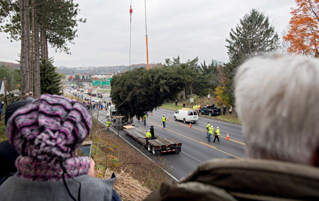 Community members watch as the 75-foot Norway spruceis loaded onto a truck to be taken to Rockefeller Center in New York City on Thursday, Nov. 9.
