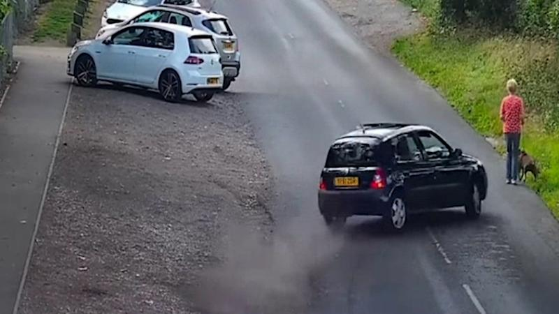 Police released footage of an alleged hit and run involving a woman and her dog.