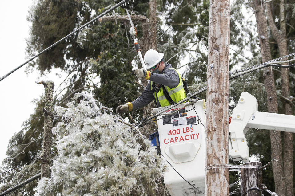 IMAGE: An AEP worker cuts tree branches from a power line (Sholten Singer / The Herald-Dispatch via AP file)