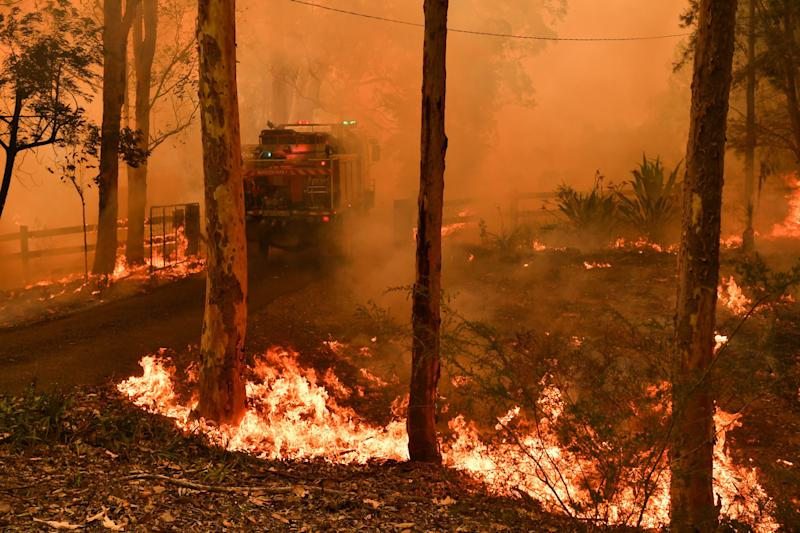 More than 54,000 hectares have been destroyed in the Werombi bushfire (pictured).